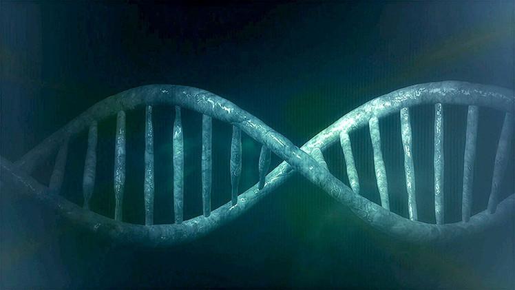 """Hallan 145 genes """"ajenos"""" en el organismo humano"""
