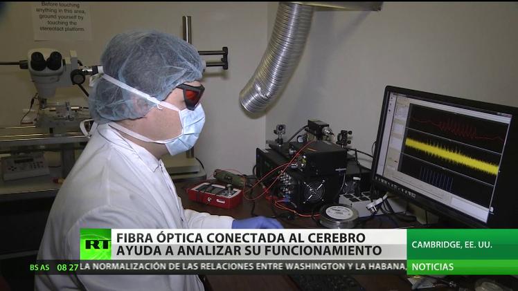 Revolución en la neurología: una fibra óptica ayudará a curar la parálisis cerebral