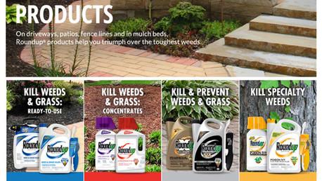 Cabildero de Monsanto: