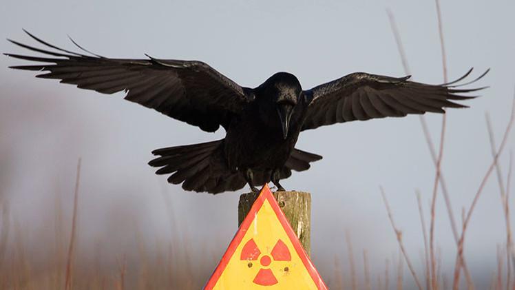 """""""El objetivo de Obama es desplegar misiles nucleares en Ucrania"""""""