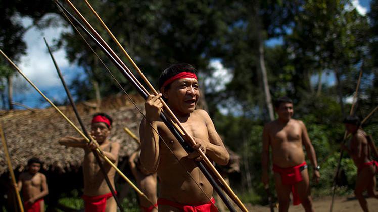 EE.UU. devuelve muestras de 'sangre ancestral' a los yanomami 45 años después
