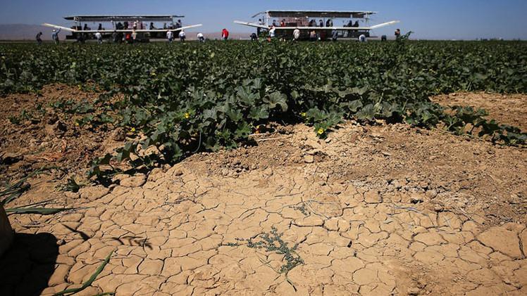 """""""Una sequía jamás vista"""": California, condenado a ser un desierto"""