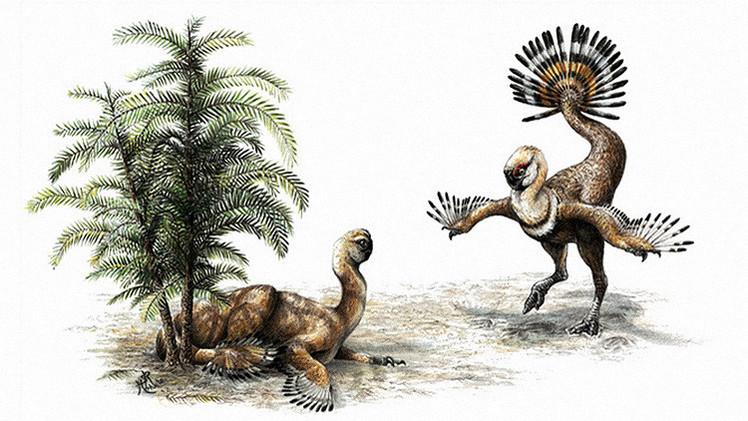 Científicos hallan a los 'Romeo y Julieta' del mundo de los dinosaurios