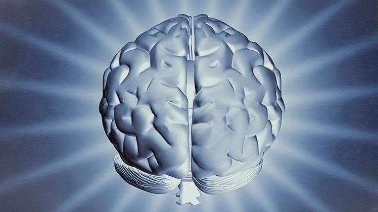 Científicos consiguen 'convertir' un cerebro femenino en masculino