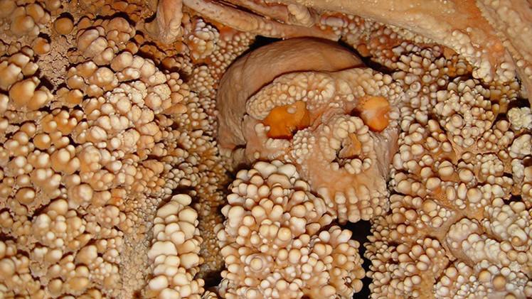 Un esqueleto italiano revela el más antiguo ADN de un neandertal