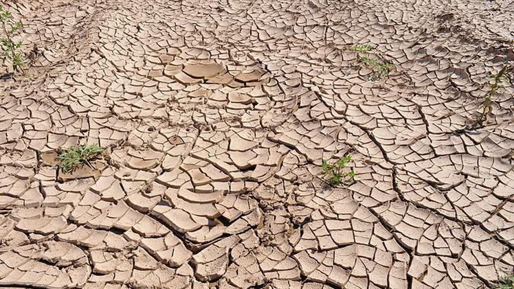 La 'guerra del agua': enfrentamientos, hambre y terrorismo mundial