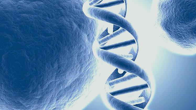 ADN artificial: ¿Una terapia universal contra el cáncer, el ébola y el VIH?