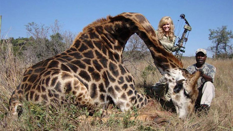 La foto de una cazadora sonriendo junto a una jirafa muerta desata polémica