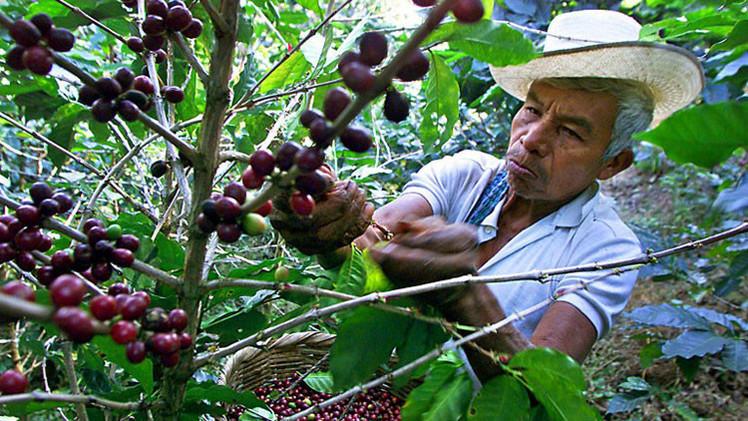 ¿Cuál es el secreto del desarrollo de América Latina?