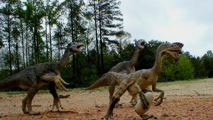 Arqueólogos hallan 43 huevos de dinosaurio en el sur de China
