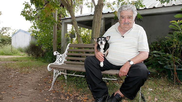 """José Mujica: """"Mi perra Manuela es el integrante más fiel que tuve en el gobierno"""""""