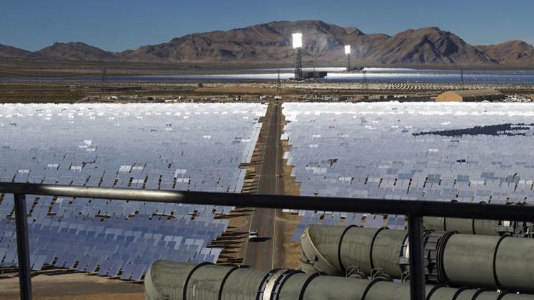 EE.UU.: Mueren más de 3.500 aves a causa de la mayor planta solar del mundo