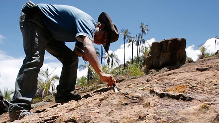 Hallan huellas de dinosaurios de más de 100 millones de años en Canadá (Foto)