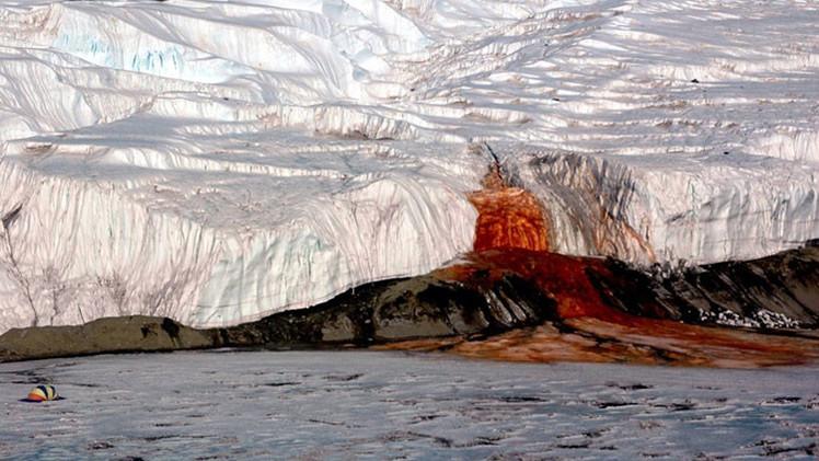 Descubren el origen de las misteriosas 'cataratas de sangre' de la Antártida