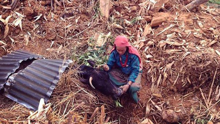 Tragedia en Nepal: cómo reconstruir la vida sobre las ruinas