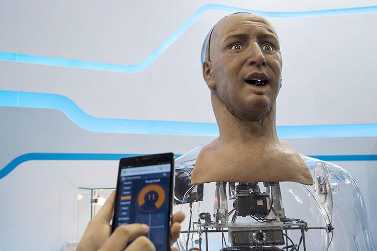 '¡Aye, Ham!': Presentan un insólito humanoide que sabe dialogar