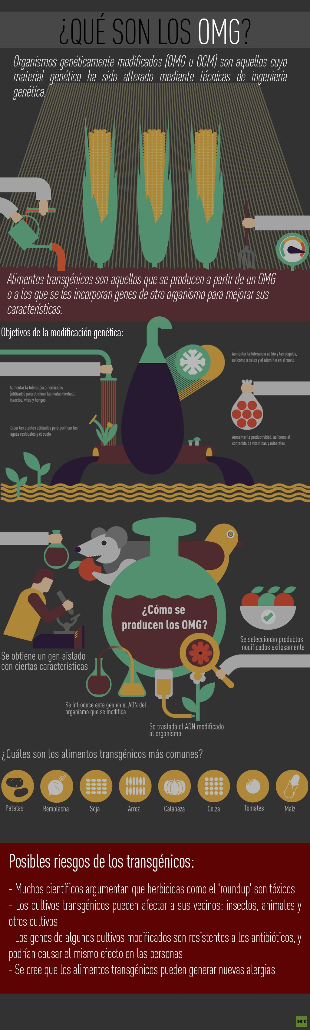 infografia OMG