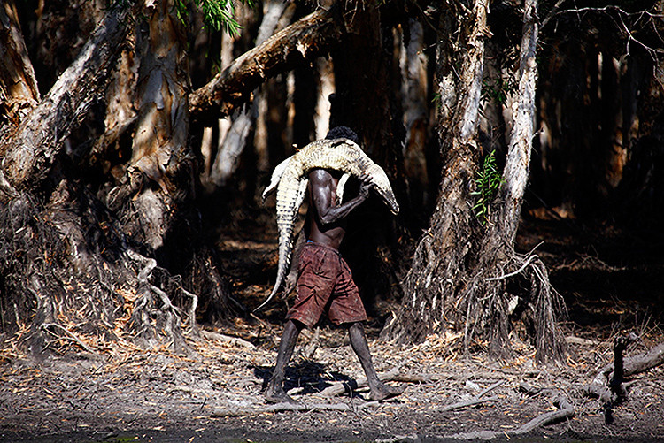 indígena australiano 1
