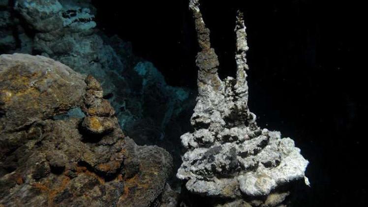 Científicos: descubren el eslabón perdido en la evolución