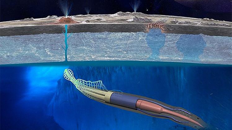 'Robocalamares' de la NASA buscarán vida extraterrestreen otros planetas
