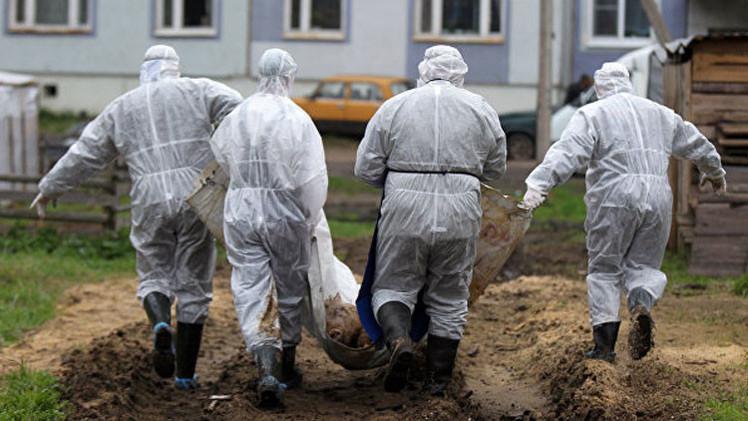 """Periodista: """"El Pentágono crea laboratorios biológicos secretos en Ucrania"""""""