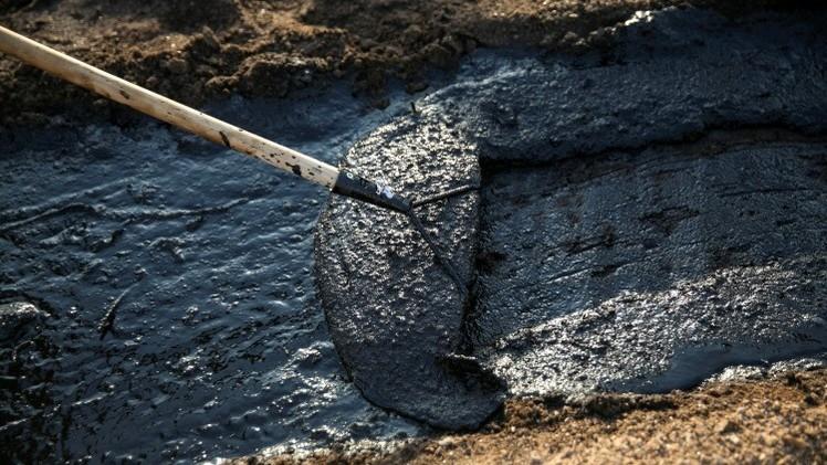 """Activistas: """"Acuerdo Transpacífico podría llevar a un desastre ambiental"""""""