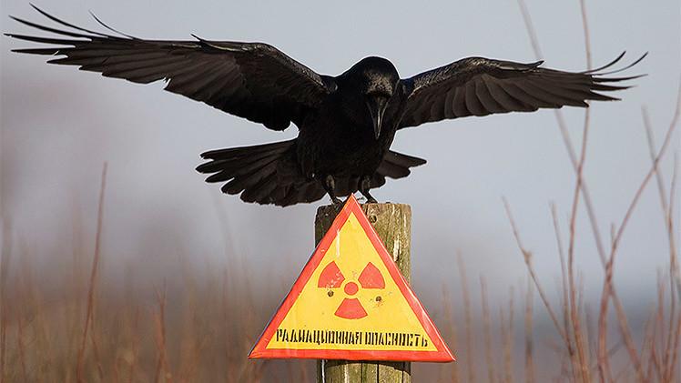 Ocho hechos clave sobre tecnología nuclear que muchos peligrosamente ignoran