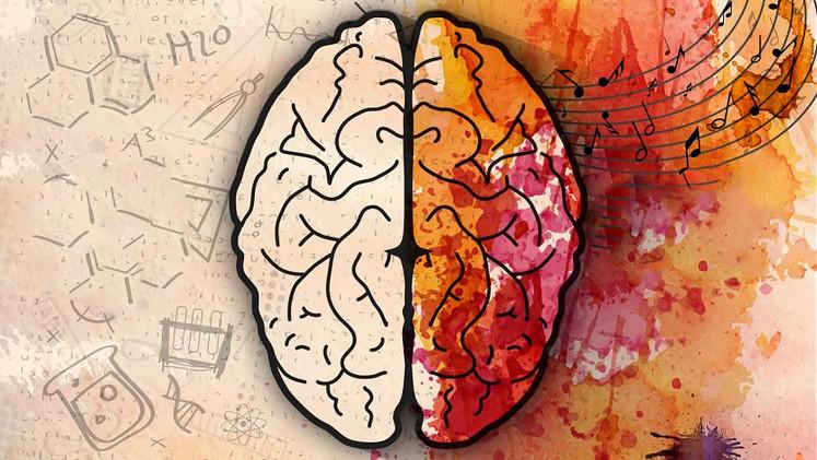 Científicos ganan la batalla contra la amnesia al restaurar la memoria en ratones