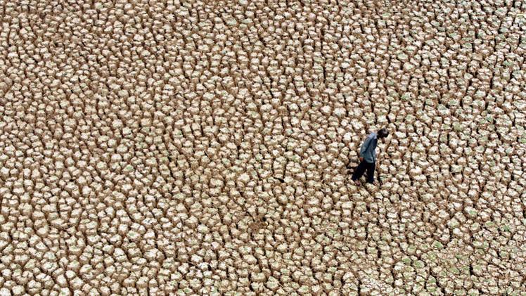 El calentamiento global mata a miles de personas cada año y la tendencia empeorará