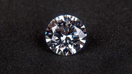 Descubren una planta que indica yacimientos de diamantes