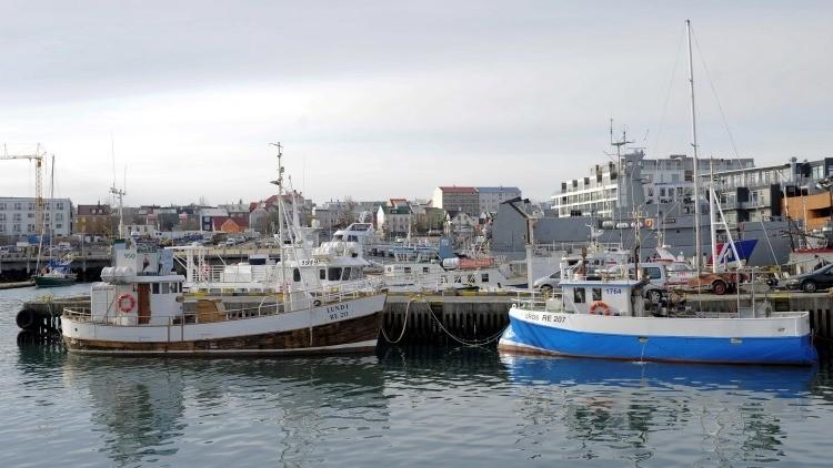 Cómo combatir la crisis financiera: receta islandesa