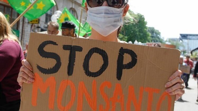"""Ministra de Ecología francesa: """"Detengan la venta no controlada de herbicidas de Monsanto"""""""