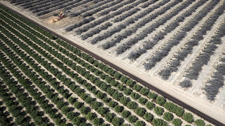 """Ricos californianos: """"No somos iguales cuando se trata del agua"""""""