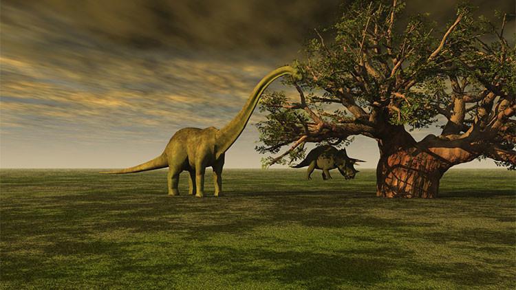 ¿Por qué los dinosaurios evitaron una zona del planeta durante 30 millones de años?