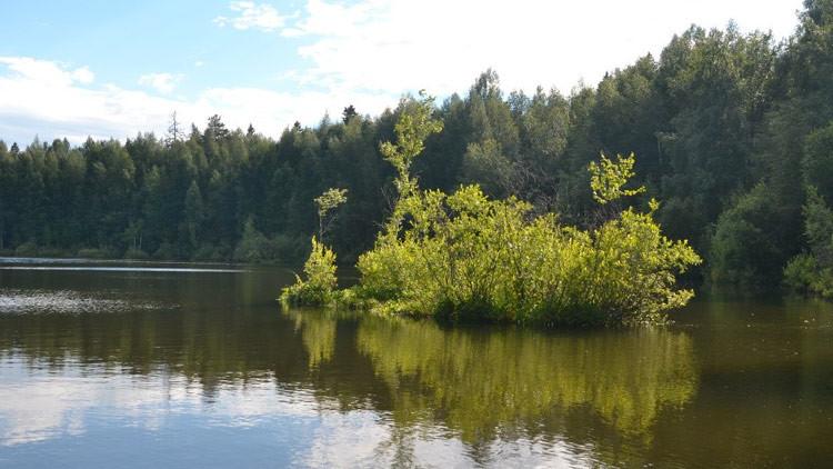 Las extrañas islas que flotan en un lago ruso: ¿A qué se debe este fenómeno?