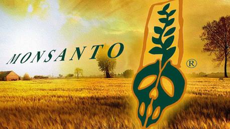 ¿Por qué Monsanto quiere cambiar de nombre?