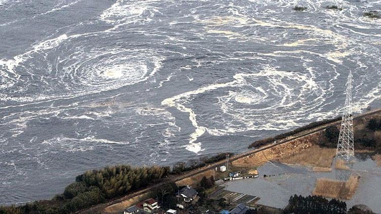 """Fukushima: """" la respuesta no tiene nada que ver con la ciencia, es cuestión de política y dinero"""""""