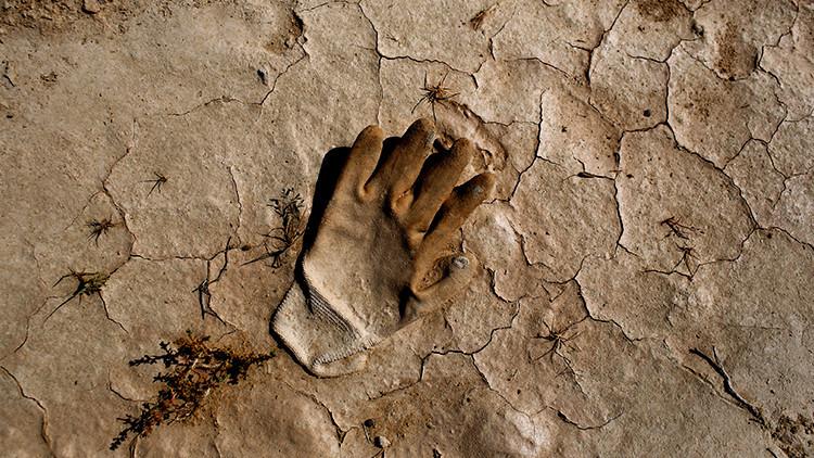 ¿Cuánto costará la extinción de los humanos?