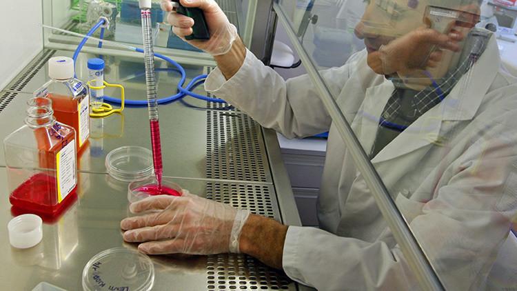 Cómo los organismos genéticamente modificados pueden convertirse en un arma biológica
