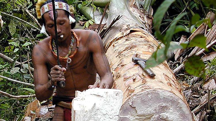 En peligro de extinción: La tribu de dientes afilados que se tatúa y adivina el futuro