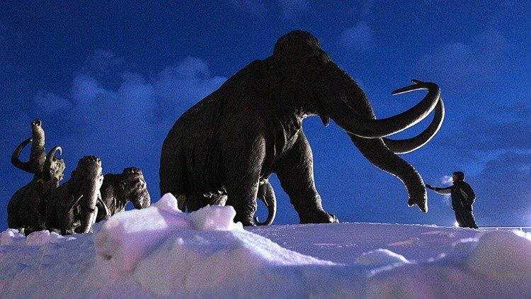 ¿Quién máto a mamuts?: Los científicos definen la causa de la muerte de los animales antiguos