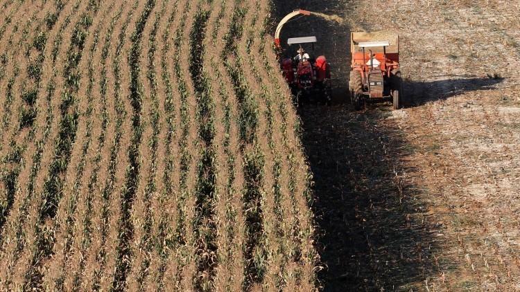 África y América Latina se perfilan como líderes en agricultura en los próximos 10 años