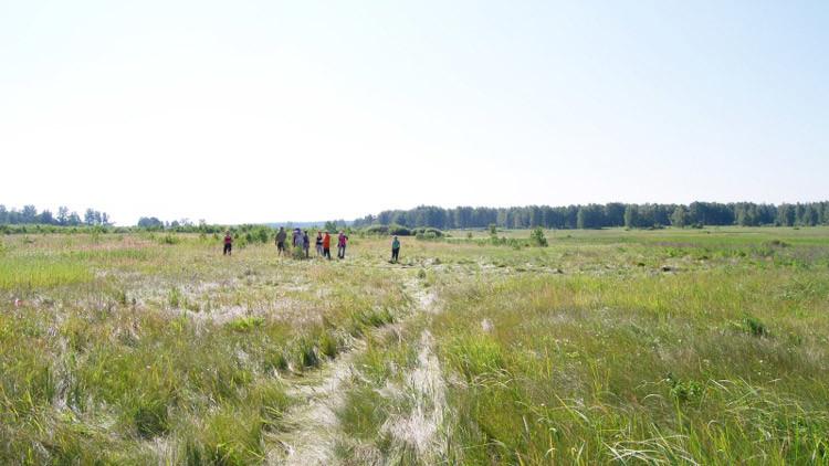 Hallan en Rusia restos de un poblado que fundía bronce hace 4.000 años