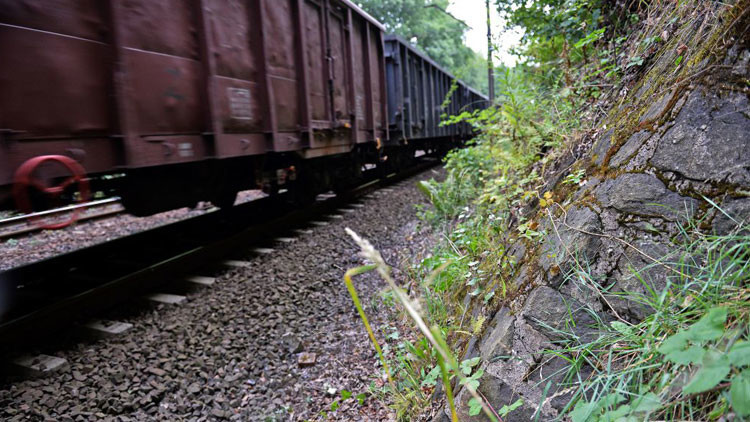 """'Caza tesoros' presentan evidencias """"concretas"""" de la existencia del tren de oro nazi"""