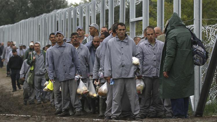 Videos: Prisioneros húngaros construyen aprisa la valla para contener el flujo migratorio