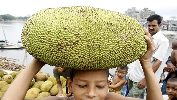 """Bióloga: """"Una fruta puede ayudar con el problema del hambre en la India, pero nadie la quiere"""""""