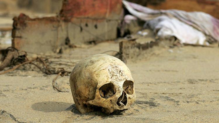 Un experimento de un cuarto del siglo revela las principales causas de muerte en el planeta