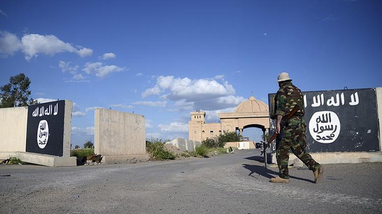 Coches y lujo esfumados: Un informe revelador muestra por qué los combatientes desertan del EI
