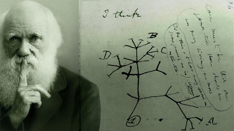 Crean un 'árbol de la vida' con 2,3 millones de especies