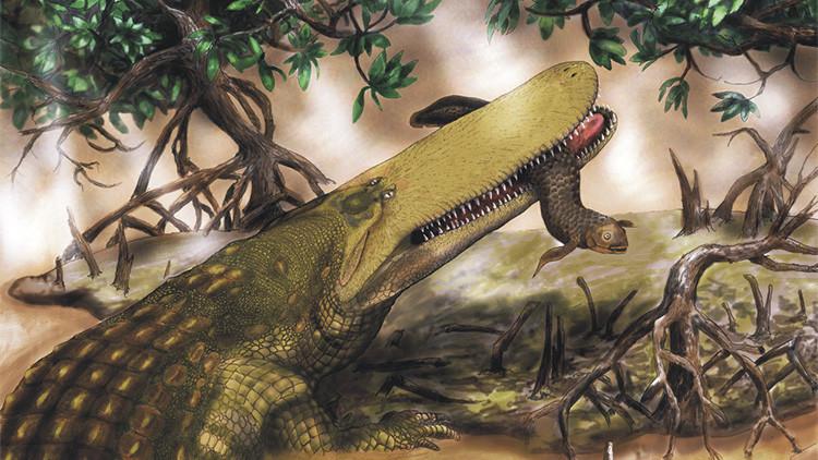 ¿Podría el cambio climático 'resucitar' los cocodrilos prehistóricos?